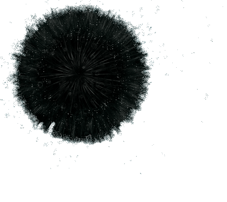 it all comes together